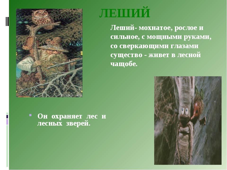 ЛЕШИЙ Он охраняет лес и лесных зверей. Леший- мохнатое, рослое и сильное, с...