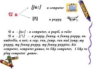 [ju:] [/\] U u a computer a puppy U u - [ju:] - a computer, a pupil, a ruler