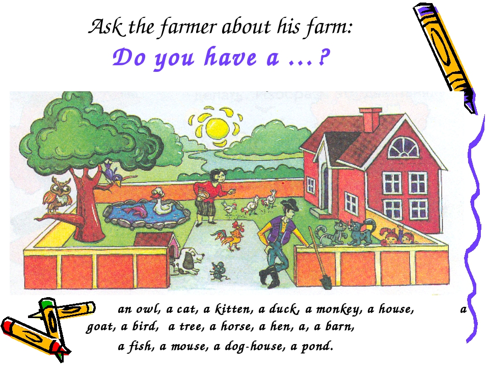Ask the farmer about his farm: Do you have a …? an owl, a cat, a kitten, a...