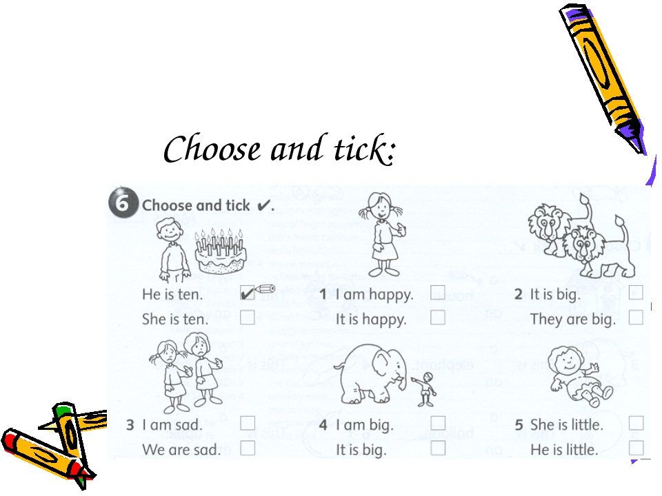 Choose and tick: