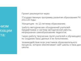Механизм реализации проекта: Проект реализуется через: Государственную програ