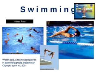 S w i m m i n g Water Polo Synchronized Swimming Water polo, a team sport pla
