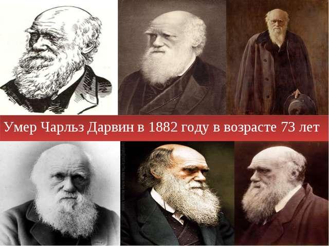 Умер Чарльз Дарвин в 1882 году в возрасте 73 лет