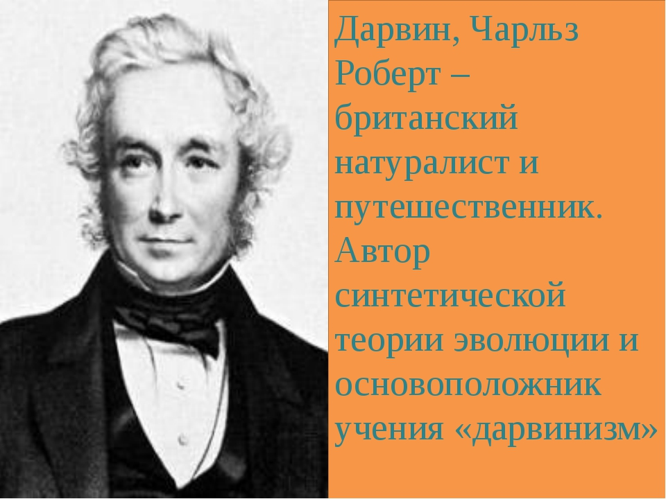 Дарвин, Чарльз Роберт – британский натуралист и путешественник. Автор синтети...