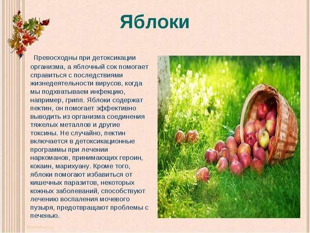 Яблоки Превосходны при детоксикации организма, а яблочный сок помогает справи...