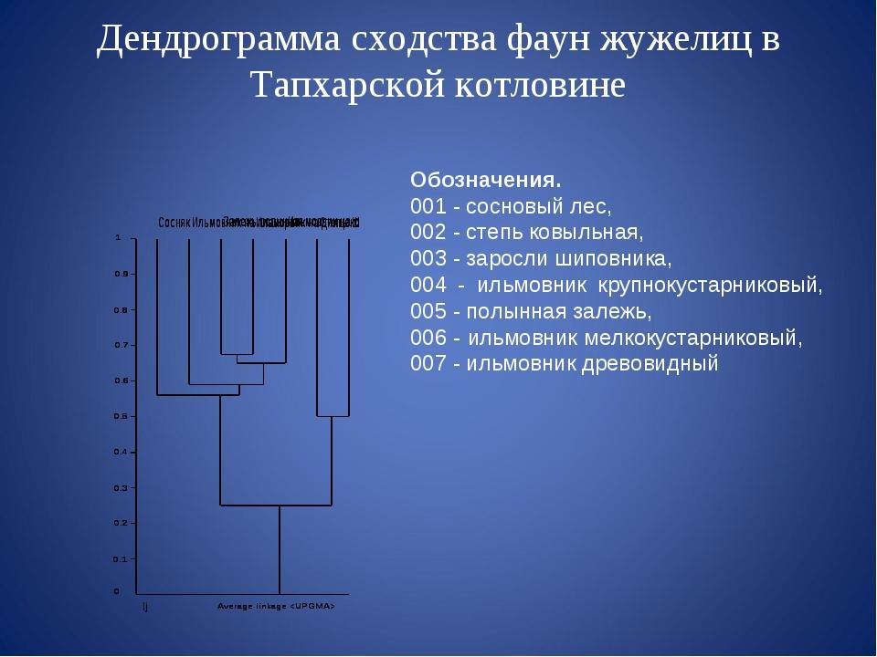 Дендрограмма сходства фаун жужелиц в Тапхарской котловине Обозначения. 001 -...