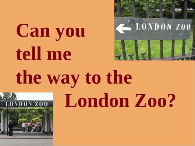 Can you tell me the way to the London Zoo?