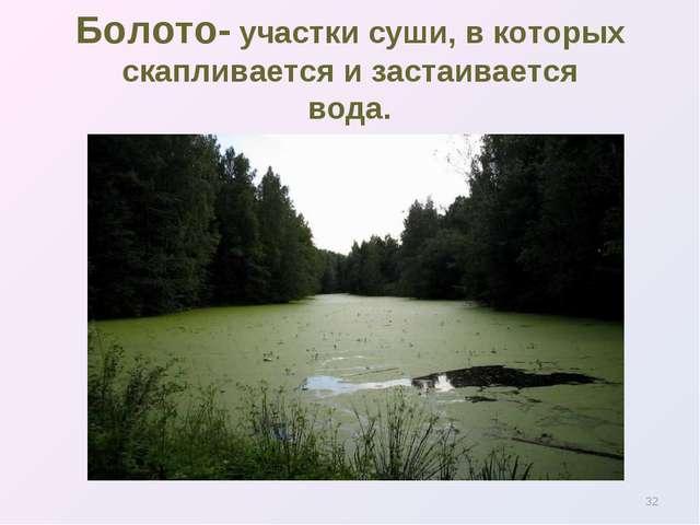 * Болото- участки суши, в которых скапливается и застаивается вода.