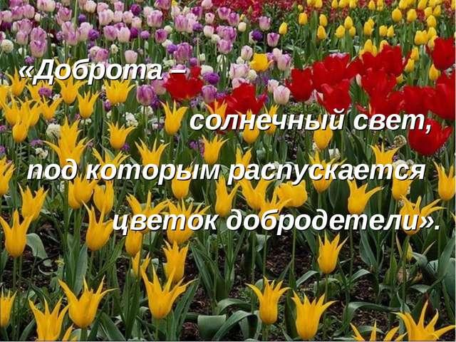 «Доброта – солнечный свет, под которым распускается цветок добродетели».