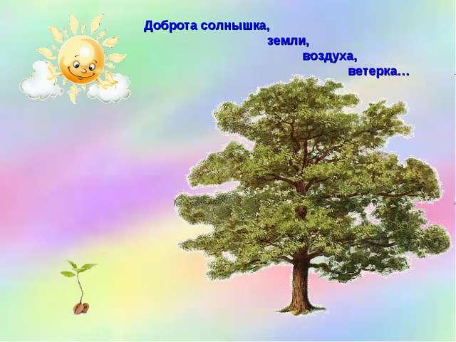 Доброта солнышка, земли, воздуха, ветерка…