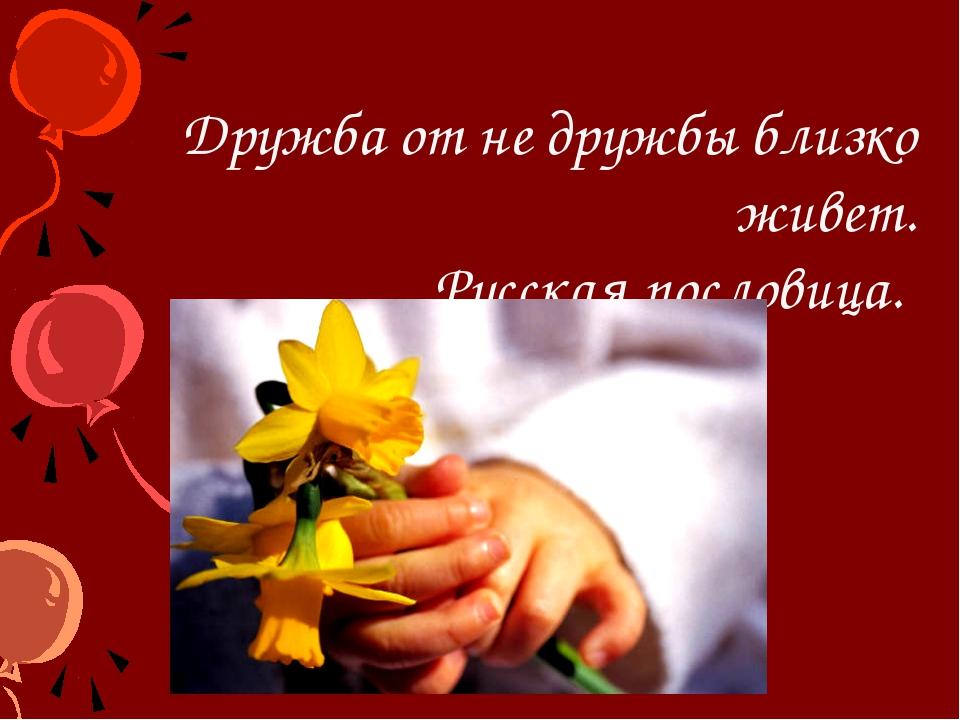 Дружба от не дружбы близко живет. Русская пословица.