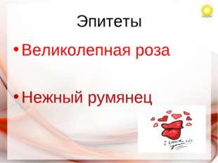 Эпитеты Великолепная роза Нежный румянец