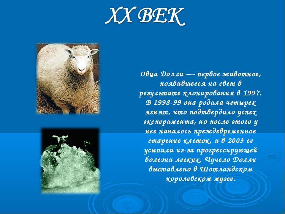 Овца Долли — первое животное, появившееся на свет в результате клонирования в...