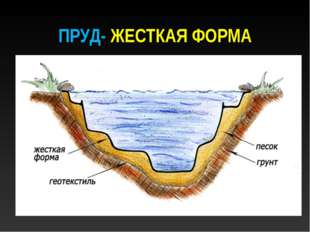 ПРУД- ЖЕСТКАЯ ФОРМА