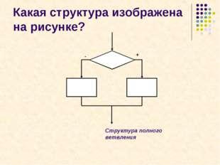 Какая структура изображена на рисунке? + - Структура полного ветвления