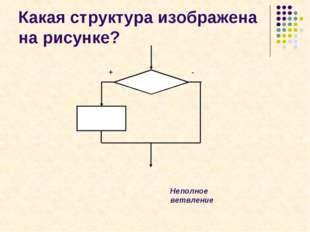 Какая структура изображена на рисунке? + - Неполное ветвление