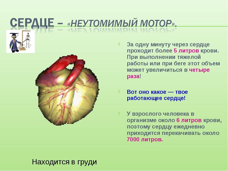 За одну минуту через сердце проходит более 5 литров крови. При выполнении тяж...