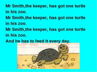 Mr Smith,the keeper, has got one turtle in his zoo. Mr Smith,the keeper, has