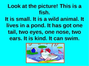 Look at the picture! This is a fish. It is small. It is a wild animal. It liv