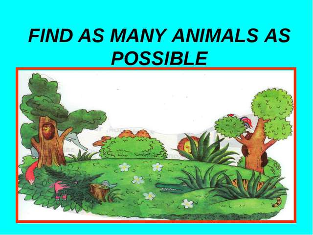 FIND AS MANY ANIMALS AS POSSIBLE