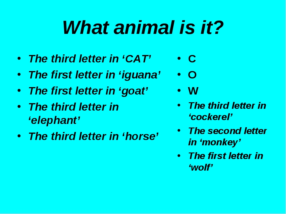 What animal is it? The third letter in 'CAT' The first letter in 'iguana' The...