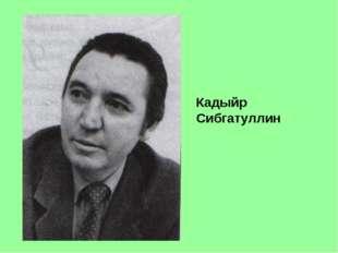 Кадыйр Сибгатуллин