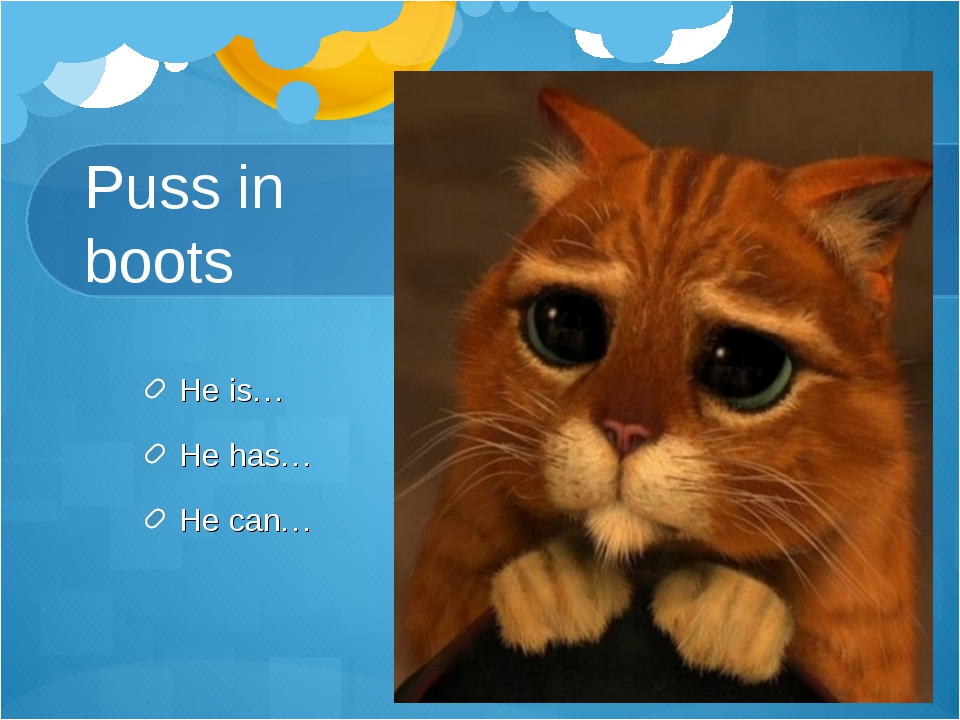Puss in boots He is… He has… He can…