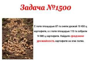 С поля площадью 87 га сняли урожай 10 450 ц картофеля, а с поля площадью 113