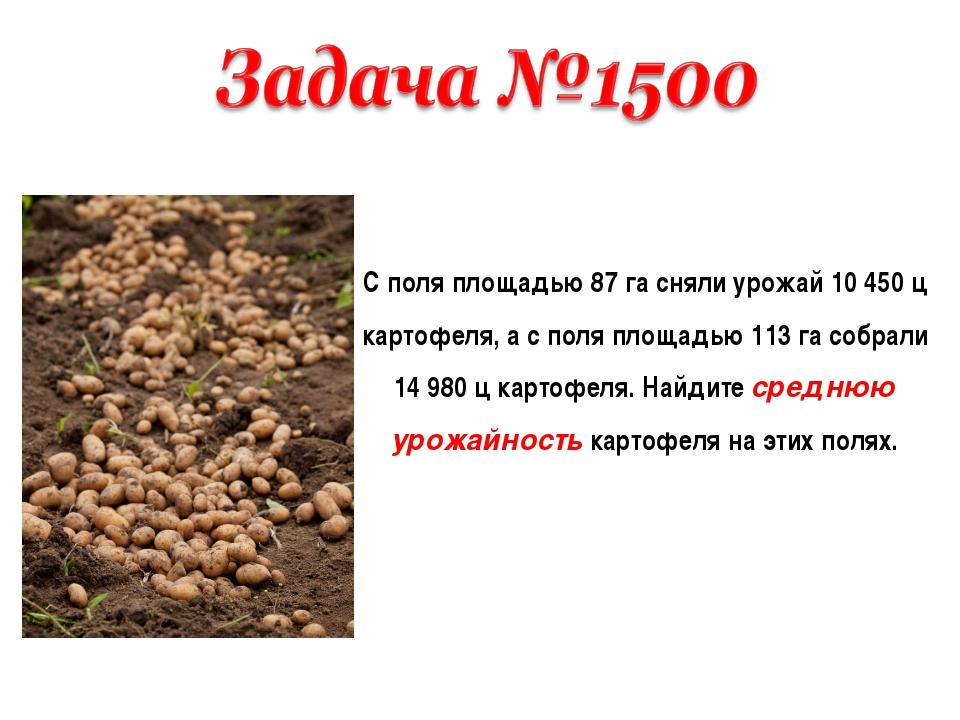 С поля площадью 87 га сняли урожай 10 450 ц картофеля, а с поля площадью 113...