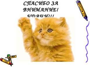 СПАСИБО ЗА ВНИМАНИЕ! УДАЧИ!!!