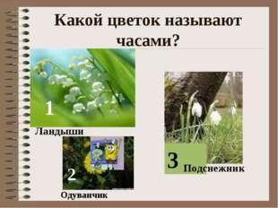 Какой цветок называют часами? 1 2 3 Ландыши Одуванчик Подснежник