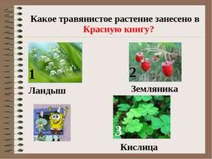 Какое травянистое растение занесено в Красную книгу? 1 2 3 Ландыш Земляника К