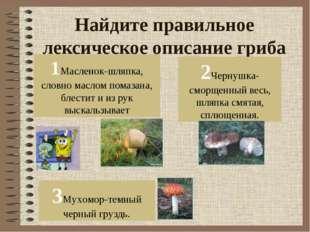 Найдите правильное лексическое описание гриба 1Масленок-шляпка, словно маслом