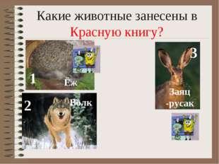 Какие животные занесены в Красную книгу? 1 2 3 Ёж Волк Заяц -русак