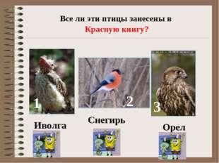 Все ли эти птицы занесены в Красную книгу? 1 2 3 Иволга Снегирь Орел