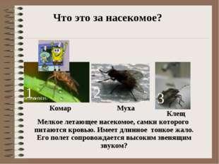 Комар 1 2 3 Муха Клещ Что это за насекомое? Мелкое летающее насекомое, самки