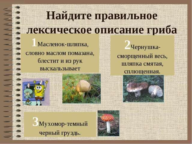 Найдите правильное лексическое описание гриба 1Масленок-шляпка, словно маслом...