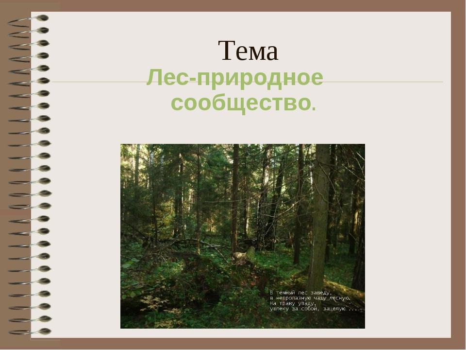 Тема Лес-природное сообщество.