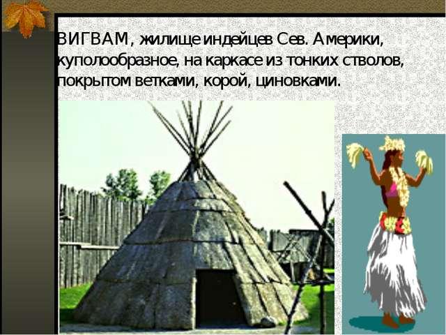ВИГВАМ, жилище индейцев Сев. Америки, куполообразное, на каркасе из тонких ст...