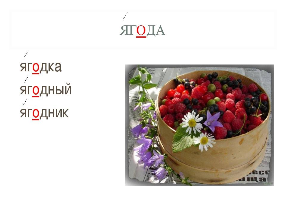ЯГОДА ягодка ягодный ягодник