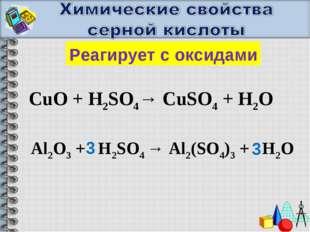 Реагирует с оксидами CuO + H2SO4→ CuSO4 + H2O Al2O3 + H2SO4 → Al2(SO4)3 + H2O