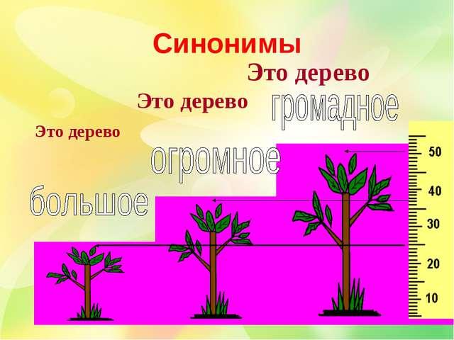 Это дерево Это дерево Это дерево Синонимы