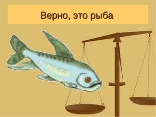 Верно, это рыба
