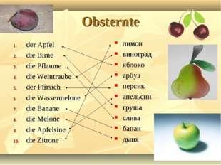 Obsternte der Apfel die Birne die Pflaume die Weintraube der Pfirsich die Was