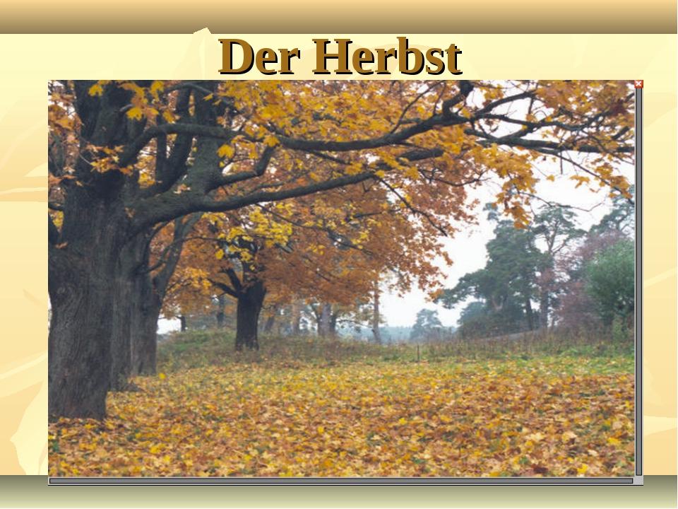 Der Herbst Heute ist richtiges Herbstwetter. Es ist nicht mehr warm. Die Sonn...
