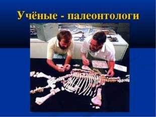 Учёные - палеонтологи