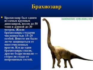 Брахиозавр Брахиозавр был одним из самых крупных динозавров, весом до 50 тонн