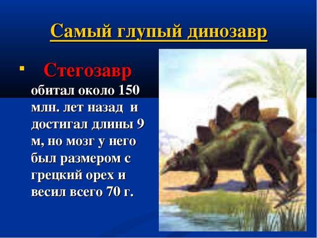Самый глупый динозавр  Стегозавр обитал около 150 млн. лет назад и достигал...