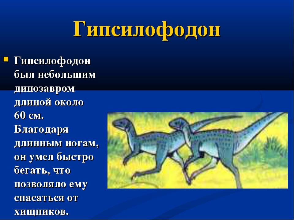 Гипсилофодон Гипсилофодон был небольшим динозавром длиной около 60см. Благод...