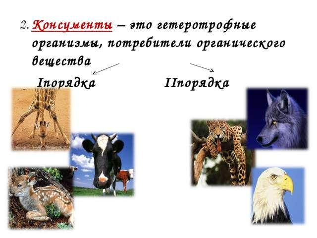 2. Консументы – это гетеротрофные организмы, потребители органического вещест...